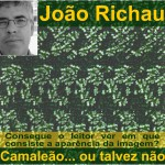 """Entrevista a João Richau, autor do livro """"Camaleão… ou talvez não"""""""