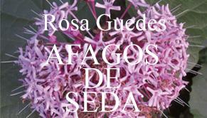 Entrevista com a autora Rosa Guedes