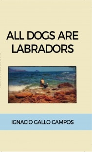 All dogs are Labradors