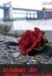 Crônicas do Amor Impossível
