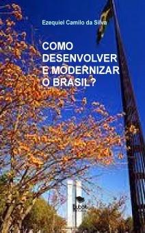 COMO DESENVOLVER E MODERNIZAR O BRASIL?