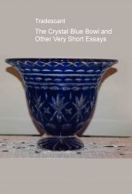 The Crystal Blue Bowl and Other Very Short Essays