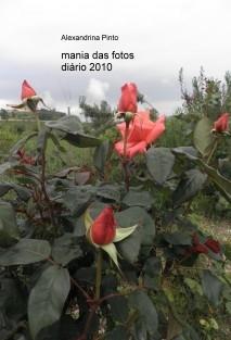 mania das fotos diário em fotos 2010