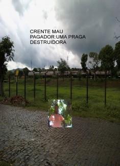 CRENTE MAU PAGADOR:UMA PRAGA DESTRUIDORA