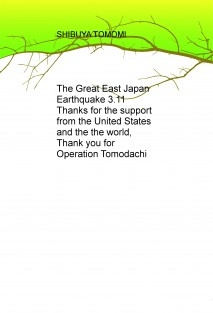The Great East Japan Earthquake 3.11
