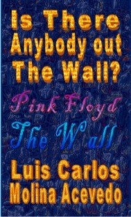 Is There Anybody Out The Wall